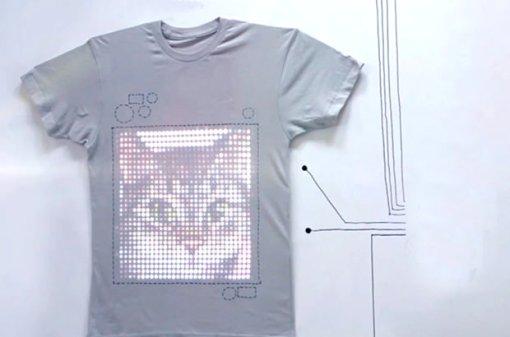 cat, web, rete
